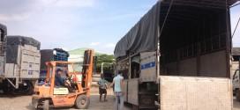 Đội xe tải chuyển hàng đi Quảng Nam